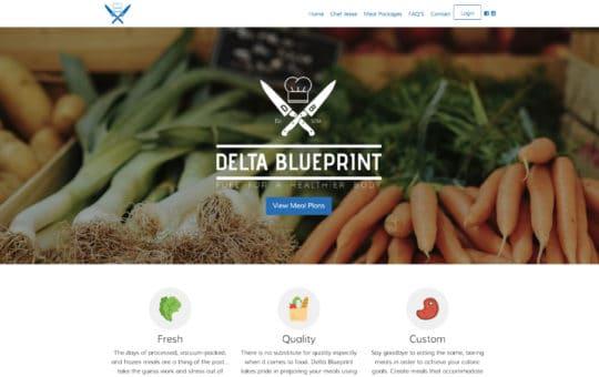Delta Blue Print
